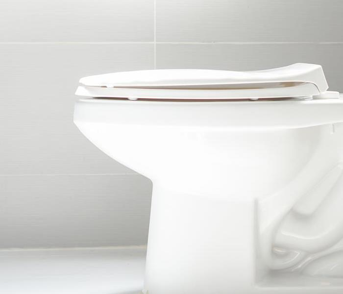 Water Damage How To Prevent Toilet Clogs in Your Building